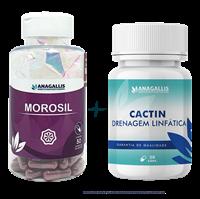 Kit Morosil + Cactin